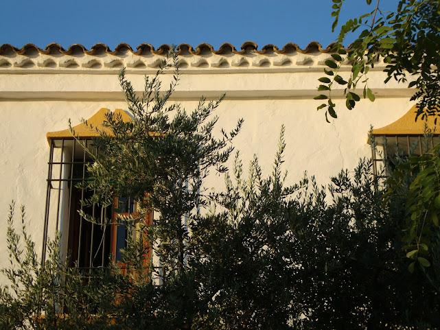 Farm house in Cordoba, Andalucia