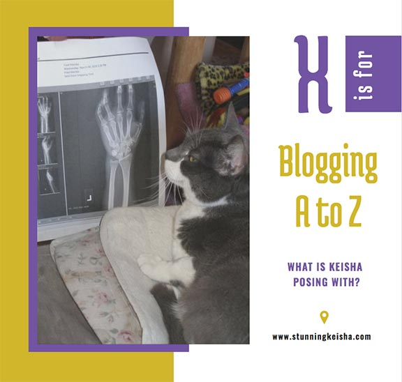 Blogging From A to Z: X is for …