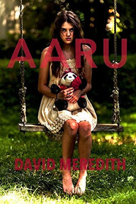 Aaru by David Meredith book cover