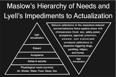 Maslow's Hierarchy of Needs Theory Essay