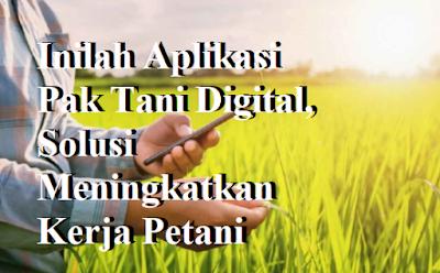 Inilah Aplikasi Pak Tani Digital, Solusi Meningkatkan Kerja Petani