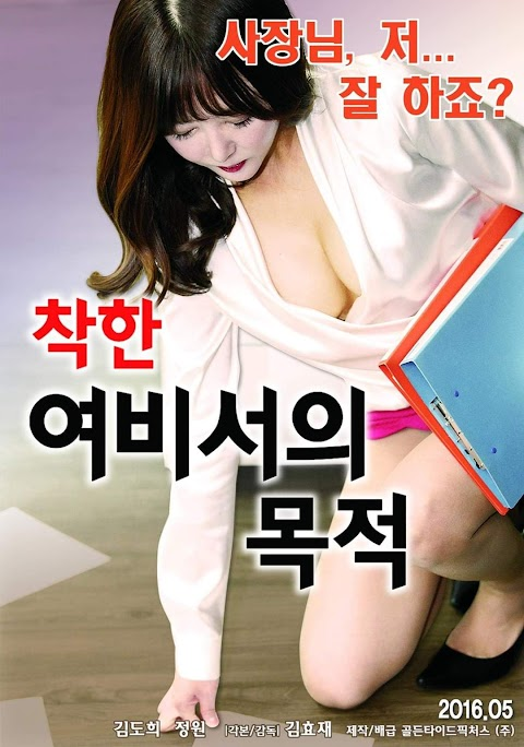What a Good Secretary Wants (2016) mmsub