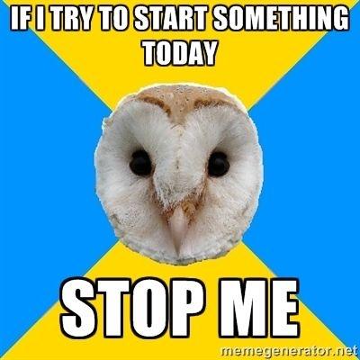 bipolar owl stop me