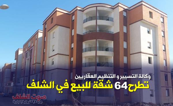 وكالة التسيير و التنظيم العقاريين تطرح 64 شقة للبيع بالشلف