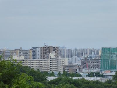 鶴見新山 頂上からの眺め