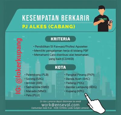 Lowongan Kerja PT. Enseval Putra Megatrading Sebagai PJ Alkes (Cabang)