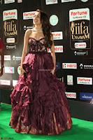 Pragya Jaiswal Sizzles in a Shantanu Nikhil Designed Gown  Exclusive 098.JPG