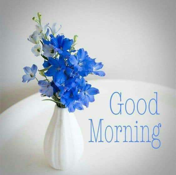 Good Morning Brazil Wishes For Facebook