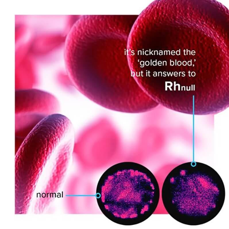 RH Null