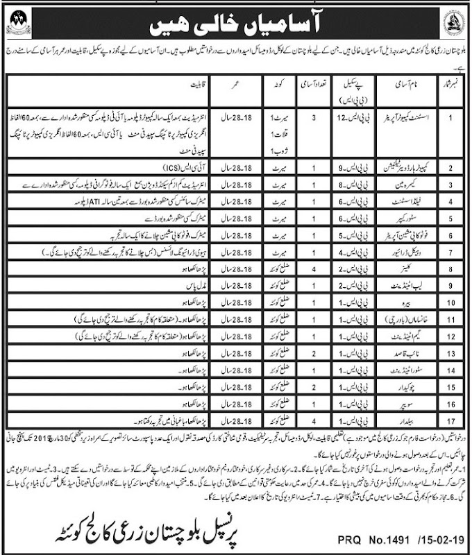 Balochistan Agriculture College Jobs