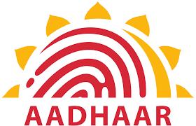 How to Get Duplicate Aadhaar Online If You Have Lost Yours