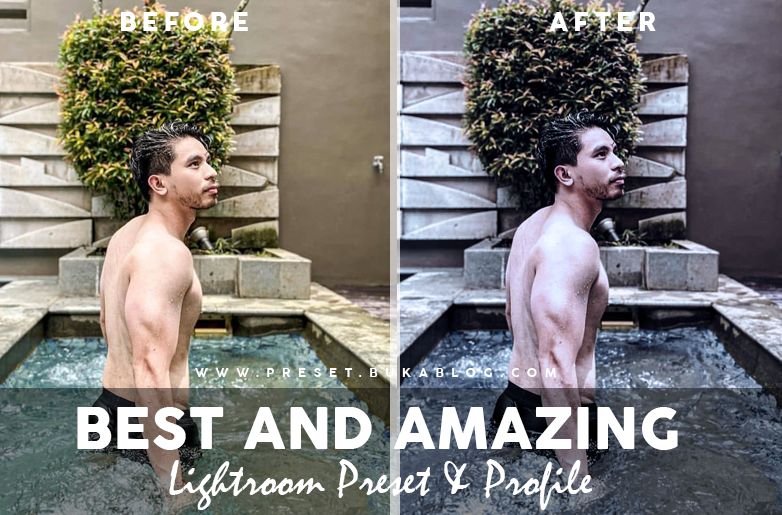 Before After Using Best Amazing Lightroom Profile and Preset