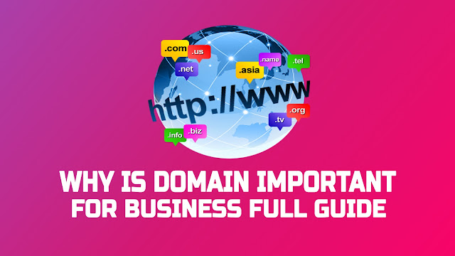 Why is Domain Important for Business Full Guide