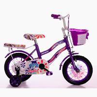 12 asagi ctb sepeda anak