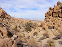 View north en route to Mount Mel, Indian Cove, Joshua Tree National Park