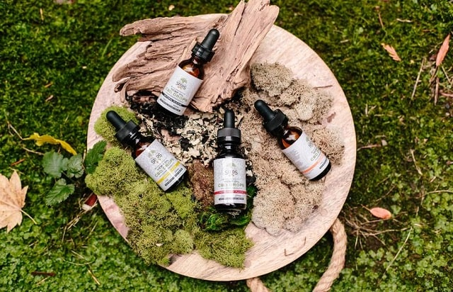 how to become a cbd distributor sell cbd oil products