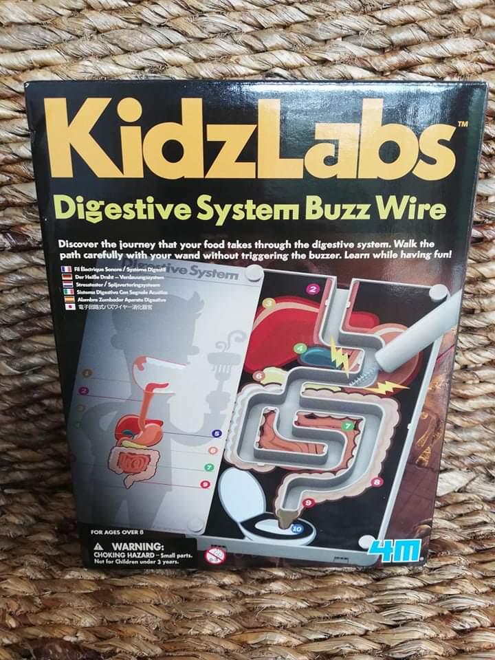 """Zestaw """"Anatomia - układ pokarmowy KidzLabs 4M"""" - Pepito"""
