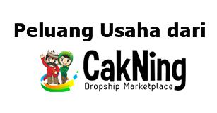 cakning-membuka-usaha-sendiri-dengan-dropship