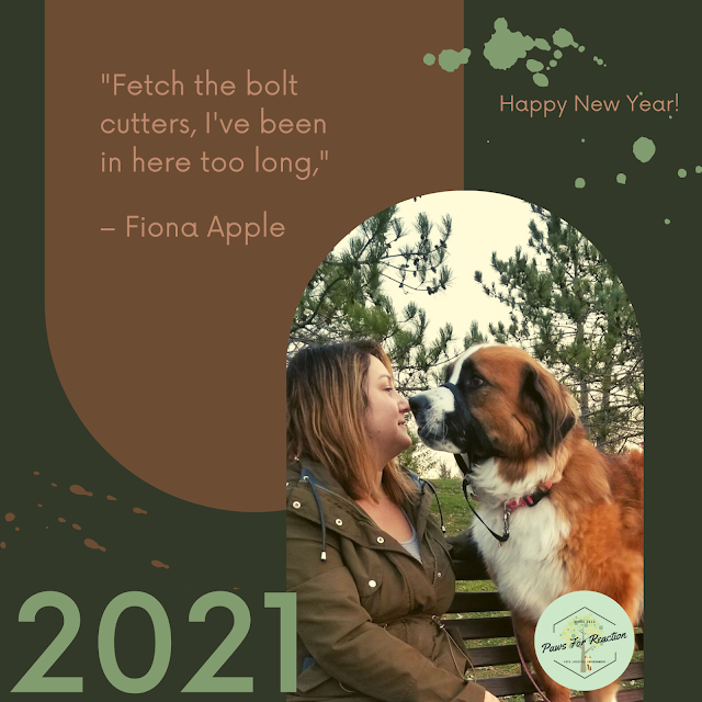 Happy New Year: End of the year message of hope for 2021 from Paws For Reaction
