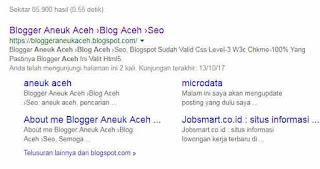 Cara agar blog dirayapi dan mudah ditemukan di google