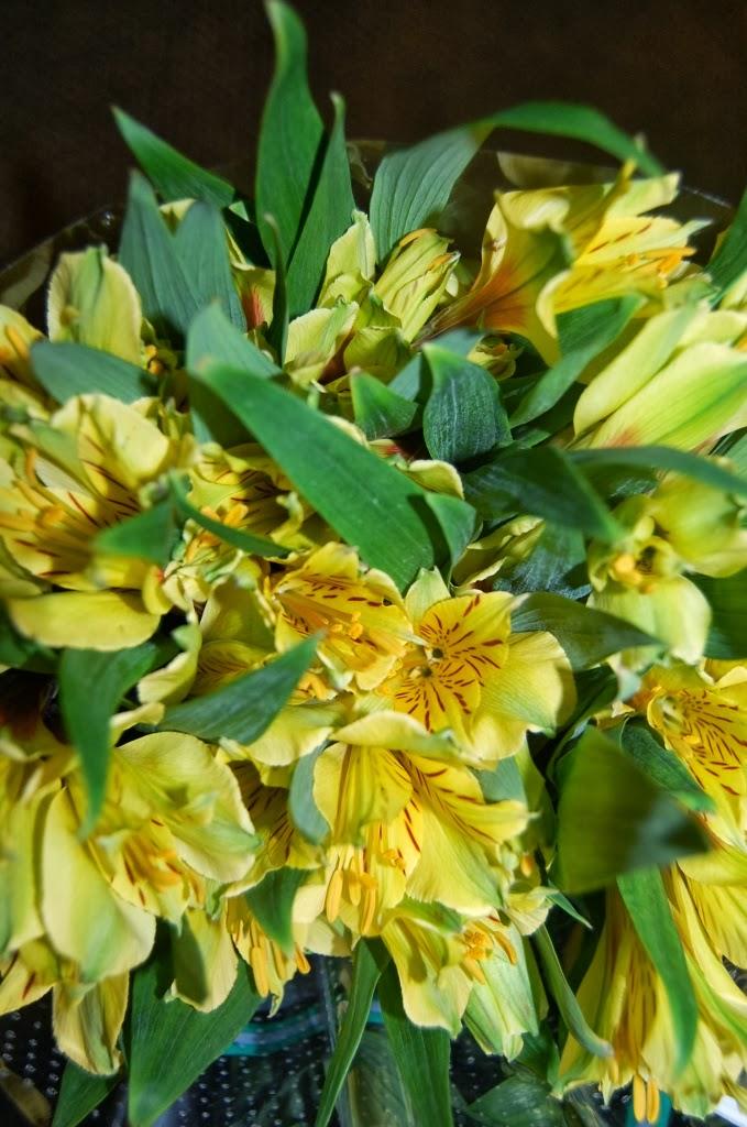 Can You Buy Florist Cut Flower Food