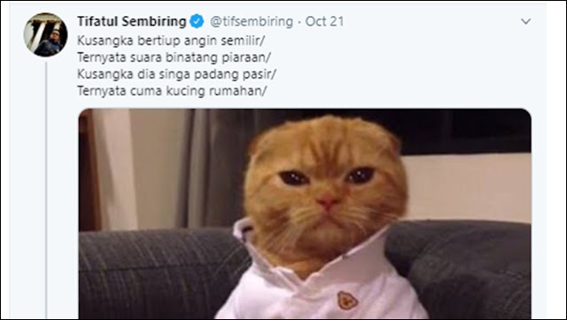 PKS Bikin Pantun soal Kucing Rumahan, Gerindra: Saat Ulama Ditangkap tapi Ustadz Diam Aja