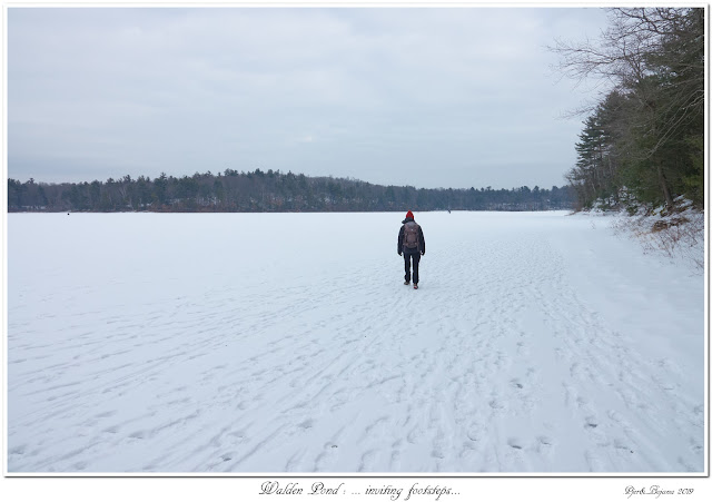 Walden Pond: ... inviting footsteps...