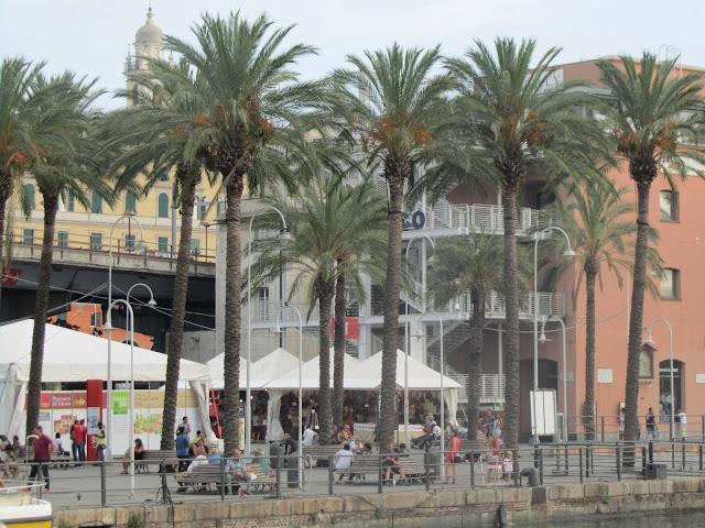 Palme da Dattero a Genova