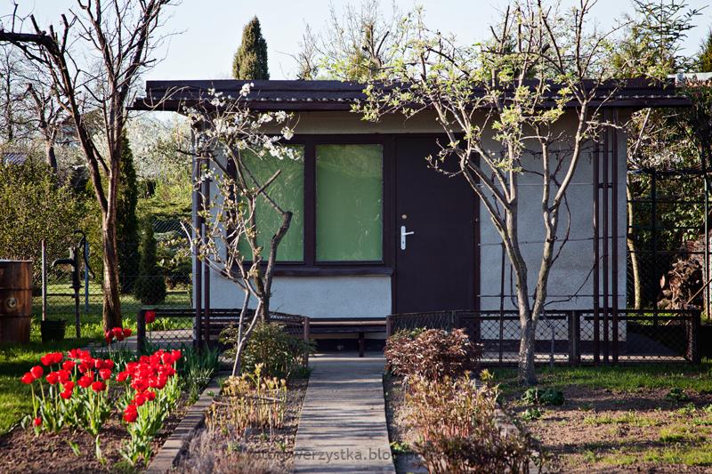 Mielec,ogródki działkowe, Metalowiec