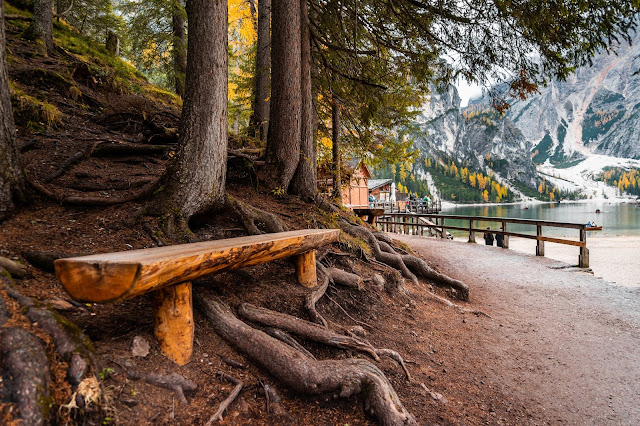 wooden bench beside a mountain lake