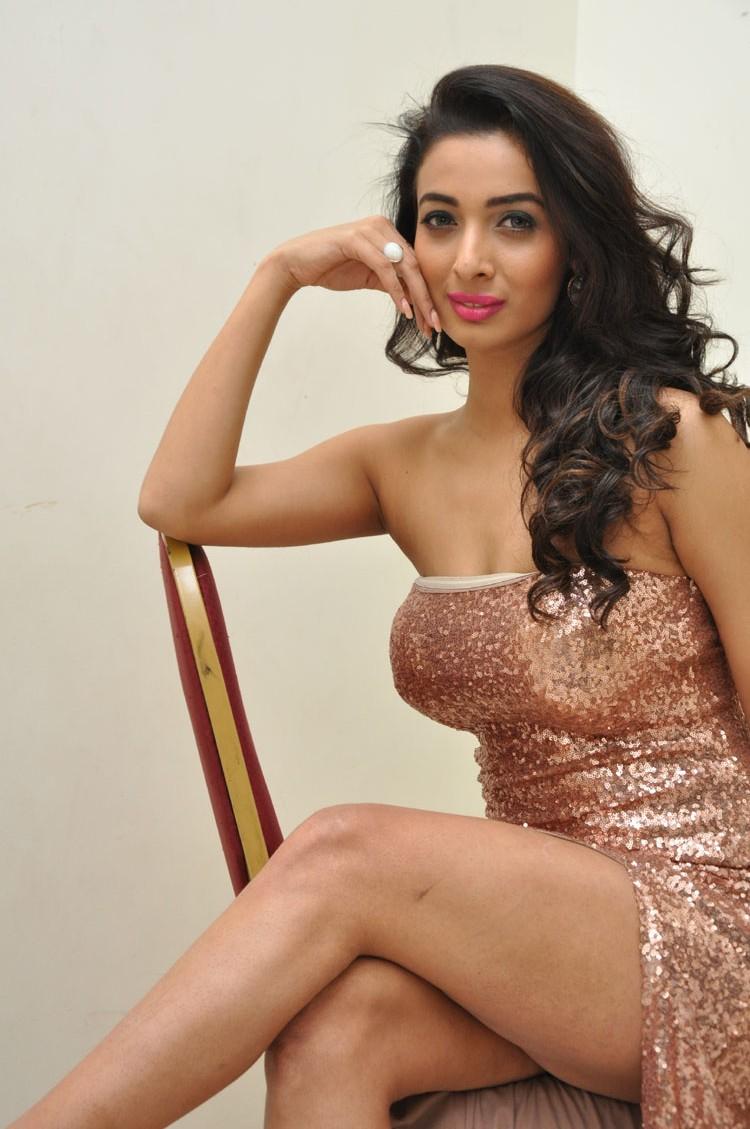 Heena Panchal sizzling at Thikka audio-HQ-Photo-6
