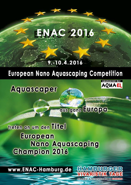 Kontes Aquascaping ENAC 2016 April Gambar Aquascape