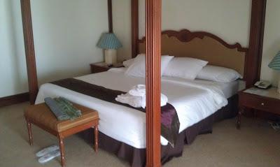 primula suite