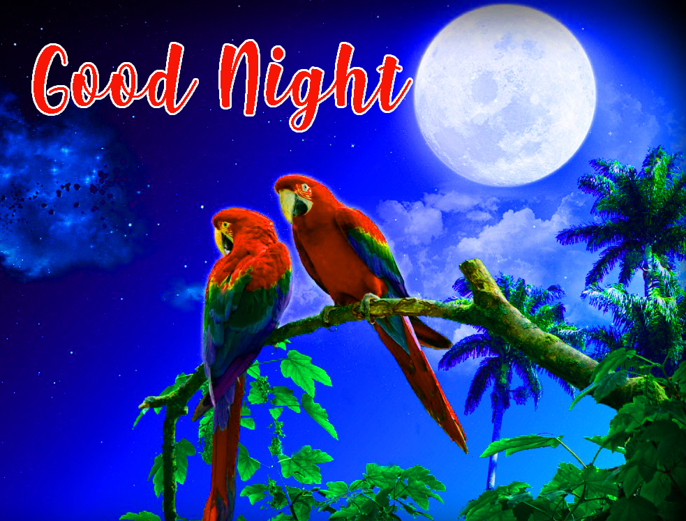 beautiful good night images for friends
