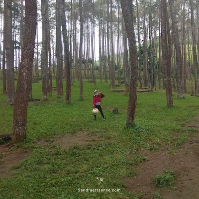 Wana Wisata Batu Kuda Gunung Manglayang Bandung Timur