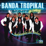 banda tropikal de vallenar indomables del sabor 2011
