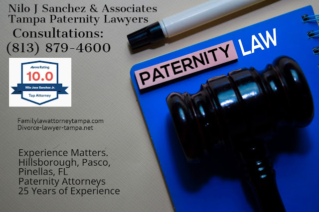 Paternity lawyers Tampa Bay Florida
