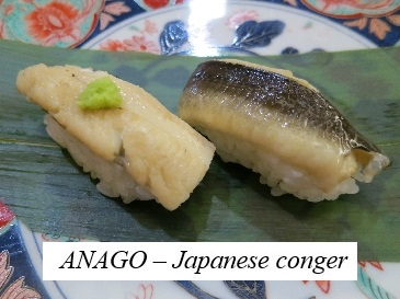 Anago(Japanese conger)