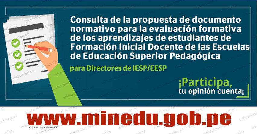 MINEDU: Consulta de la propuesta de documento normativo para la evaluación formativa de los aprendizajes de estudiantes de Formación Inicial Docente de las Escuelas de Educación Superior Pedagógica
