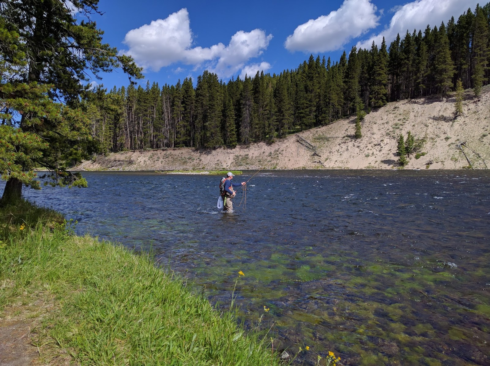 What happening with us fly fishing yellowstone river for Yellowstone fly fishing
