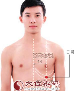 日月穴位 | 日月穴痛位置 - 穴道按摩經絡圖解 | Source:xueweitu.iiyun.com