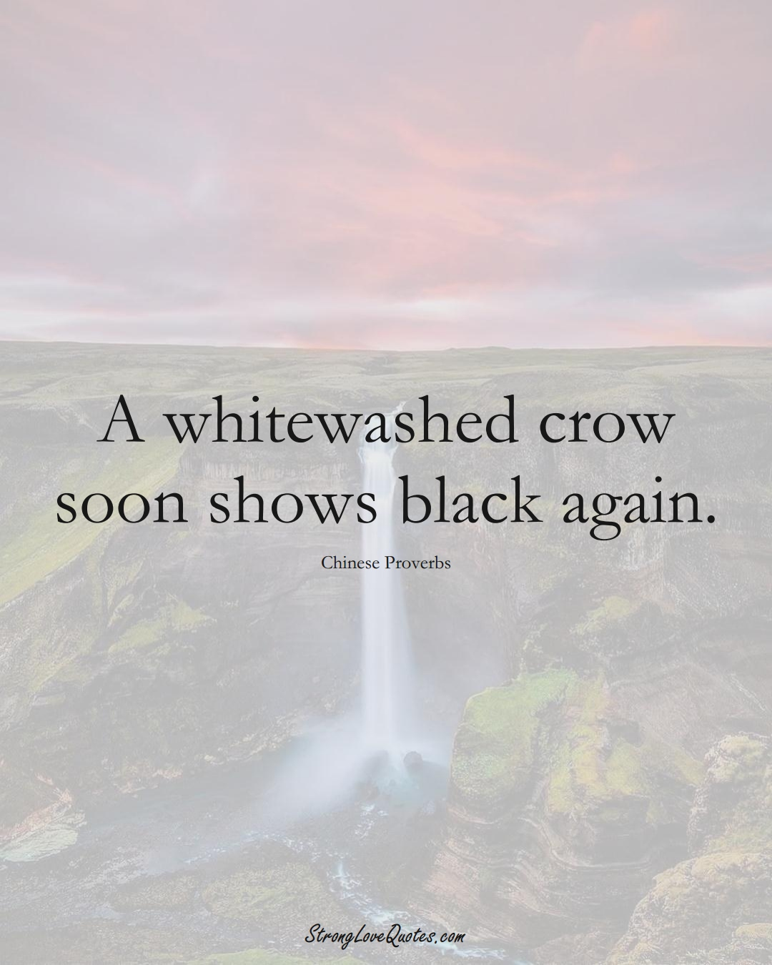A whitewashed crow soon shows black again. (Chinese Sayings);  #AsianSayings