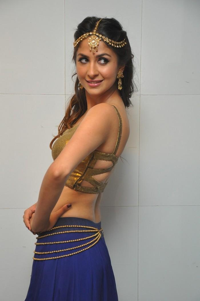 Malvika Raaj At Jayadev Movie Audio Launch Gallery