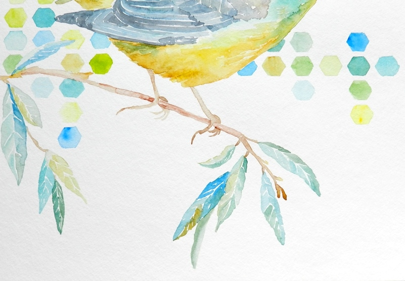 Yellow and Blue Bird on a Branch- Original Watercolor Painting by Elise Engh