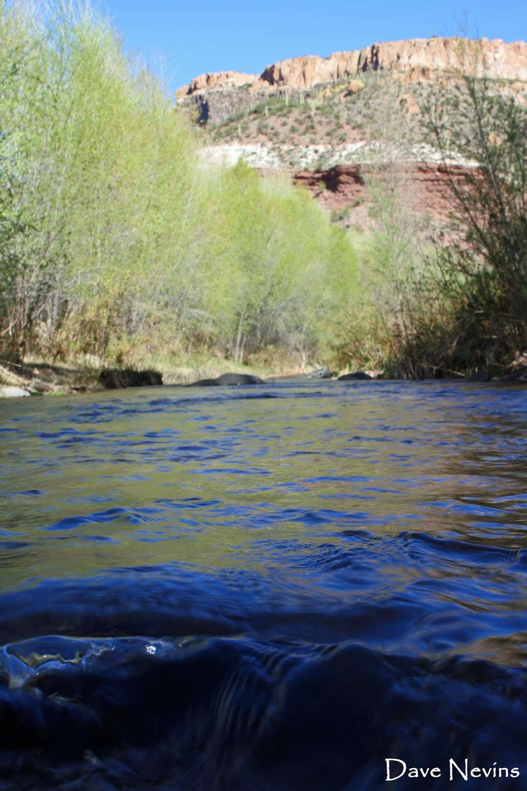 no limits aravaipa canyon a brief appearance by edward abbey the possible location of his grave i was surprised to in arizona highways that abbey was the first manager of the aravaipa preserve