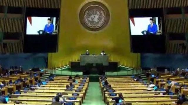 Jokowi Berdiri Depan Palestina Saat Ada Negara Arab Menikamnya