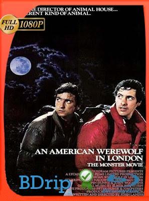 Un hombre lobo americano en Londres (1981) HD 1080p BDRip Dual Latino-Inglés [Subt. Esp][GoogleDrive] DizonHD