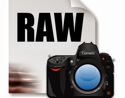 raw,jpeg,raw vs jpeg,jpg,raw vs jpg,advantages,disadvantages,pros,cons,how to,how-to,nemanja sekulic,photography,tutorial,photography tips,dslr,camera,retouching,should i shoot raw,why i shoot raw,what is better raw or jpeg,raw or jpeg,take your photography to the next level,should i shoot raw or jpeg,photography basics,photography tutorial,photography tutorials for beginners,mirrorless,gogo,dc,dmv,rawimage