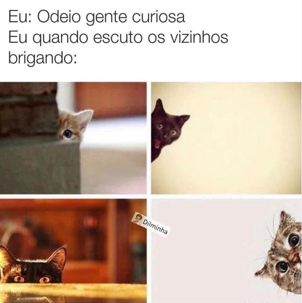 brigado.png (608×610)
