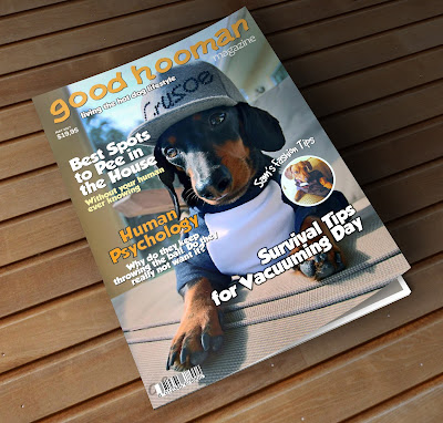first draft of good hooman magazine cover